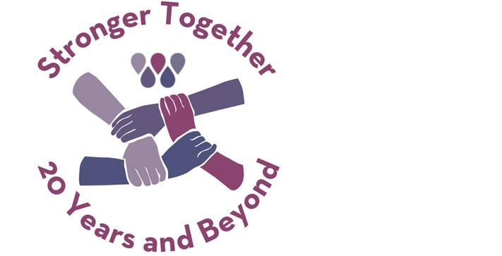 20th Anniversary logo header